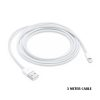 Apple 3 Meter Cable